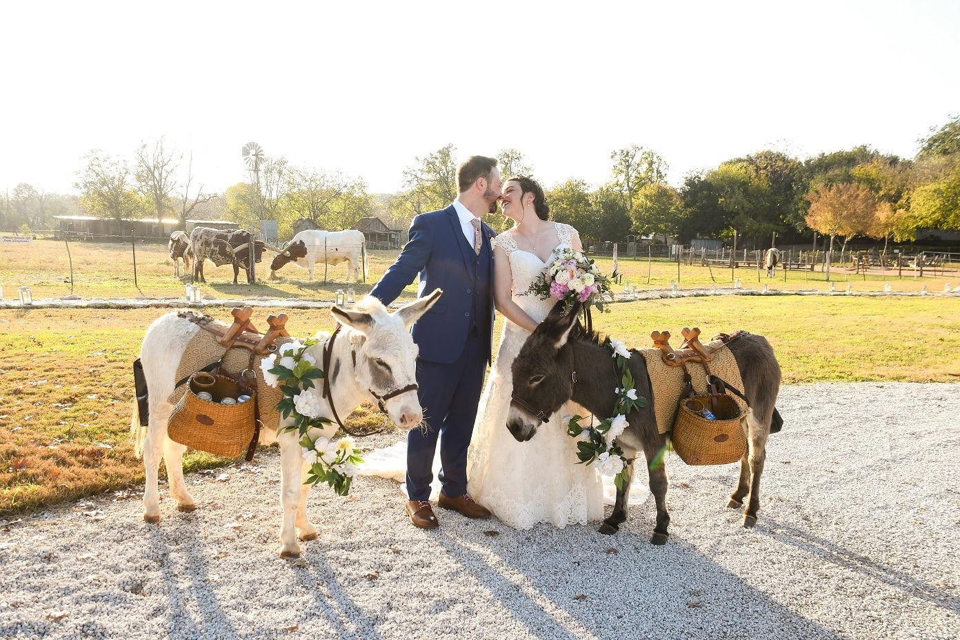 Beer Burros Texas Weddings
