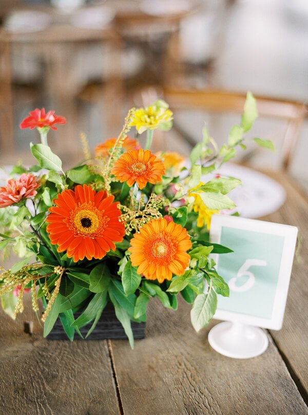 intimate-colorful-wedding-at-gruene-estate-62